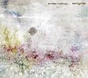 Invisible Landscape.../CD/LNR-011