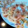 Japanese,Nature feeling アルバム MOTOASA-1