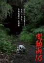 闇動画16/DVD/OED-10372