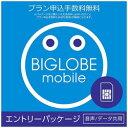 ビッグローブ ナノSIM/マイクロSIM/標準SIM BIGLOBEモバイル 音声/データ共用 Select_KIT_W