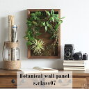 arne パネル Botanical s7