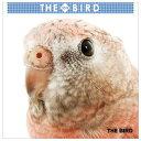 THE BIRD 2019年ミニカレンダー(1コ入)