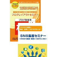 【初心者用】ブログとSNSを活用してリアルの集客に役立てるためのDVDセット/DVD/RAB-1042