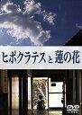 ランド 「ヒポ+三聖」お買得セット 2DVD