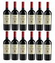 エニーラ 2015 ENIRA 赤ワイン ブルガリア メルロー シラー カベルネ ヴィントナーズ