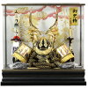藤浪 着用兜ケース 剣竜 金 155-774