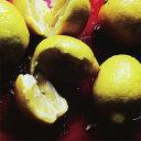 LemonPop/