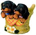 エイチツーオー 2匹の仔犬付プランターL ダックス H604
