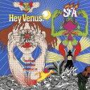 ヘイ・ヴィーナス!/CD/XQCY-1003