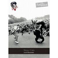ライヴ・アット・ロックパラスト 1981&1983/DVD/YMBZ-10836