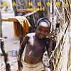 Safari アルバム YKBN-1