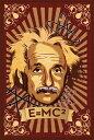 ポスター Albert Einstein(Mural)《PPS-121》