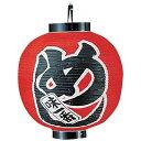 ビニール提灯 印刷15号丸型 めし YTY06002