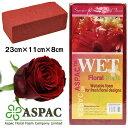 ASPAC フローラルフォーム(オアシス)カラー ワインレッド WET COLOURED FOAM RED WINE 028 (9048642)
