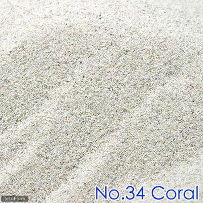 No.34 Coral サンゴ砂 パウダー 9リットル 60cm水槽用