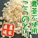 画流 コシヒカリ(こうのとり米)玄米 1kg