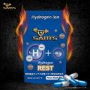 SAM'S Hydrogen REST