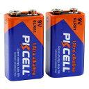 PKCELL BATTERY 9Vアルカリ電池 2個パック 6LR61-2B