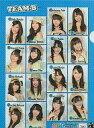 AKB48 チームB クリアファイル「AKBがいっぱい-SUMMER TOUR 2011-」
