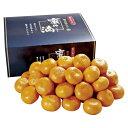 和歌山ありだみかん蜜の滴 しずく約4.3kg H-MR8