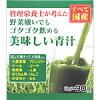 日本漢方 ゴクゴク飲める美味しい青汁 30包