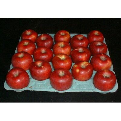 減農薬 生食用 長野産 紅玉りんご 4kg
