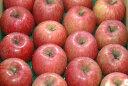 減農薬 長野産 サンふじりんご