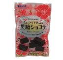 沖縄物産企業連合 ちょっぴり不思議な黒糖ショコラ 50g