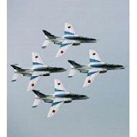 航空観閲式'08 平成20年度 自衛隊記念日/DVD/WAC-D605