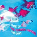 ザ・ベスト・オブ・ソウル・フラワー・ユニオン 1993-2013/CD/XBCD-1040