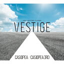 VESTIGE -40th HISTORY ALBUM-/CD/HUCD-10243