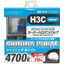 スーパーハロゲンバルブ シャイニングホワイト H3C BB-813