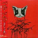メイビー・ゴースツ/CD/WS-109