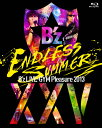B'z LIVE-GYM Pleasure 2013 ENDLESS SUMMER-XXV BEST-【完全盤】/Blu-ray Disc/BMXV-5021