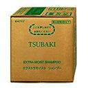 資生堂 ツバキ(TSUBAKI)シャンプー(10L 業務用)