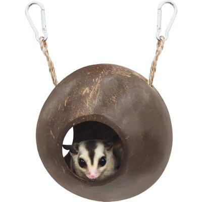 レインボー ゆらゆらココナッツ