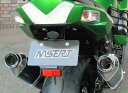 BEET ビート フェンダーレスキット ZX-14R