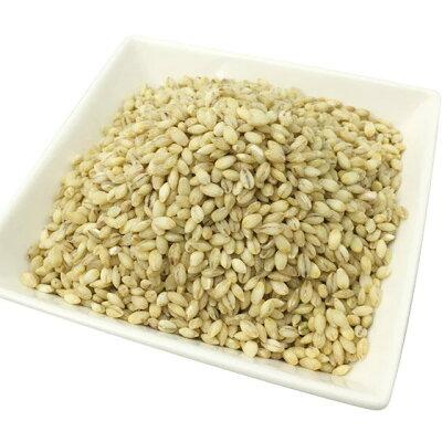 国産 もち麦 1kg 希少な北海道産キラリモチ 100%