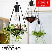 テラリウムのようなペンダントライト 1灯 ジェリコ BBP-078