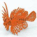 3Dペーパーパズル ミノカサゴ 橙 ウラノ ペーパーPミノカサゴオレンジ