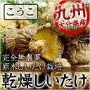 乾燥しいたけ シイタケ 椎茸 九州産 天然乾燥野菜 乾燥椎茸 こうこ 80g