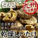 乾燥しいたけ  九州産 天然乾燥野菜 どんこ 120g
