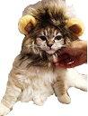 PACO-DG PacoShop919 猫が ライオンに大変身 ウイッグ 愛犬 愛猫 ちゃん P304