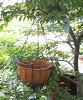 アンティーク バスケット オシャレ な 西欧 風 の ハンキング バスケット
