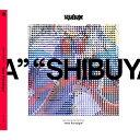 New Paradigm/CD/AN-0010