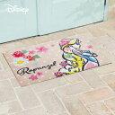 クリーンテックス・ジャパン Disney Mat Collection ディズニー 玄関マット Rapunzel ラプンツェル 50 × 75 cm BK00055