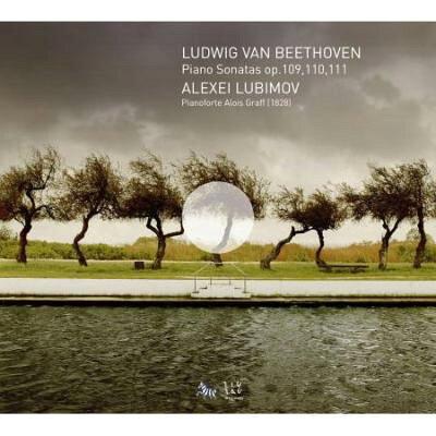 Beethoven ベートーヴェン / ピアノ・ソナタ第30番、第31番、第32番 リュビモフ 輸入盤