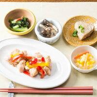 日清医療食品 鶏肉のハーブガーリックと鮪の生姜煮 206X24