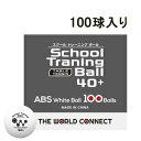 THE WORLD CONNECT  DV001A ワールド・トレーニングボール