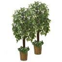 インテリアグリーン/人工観葉植物     ベンジャミン&ベンジャミン 光触媒加工 幹:天然木使用